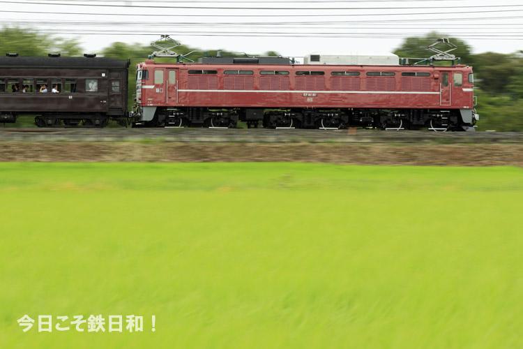_MG30200.jpg