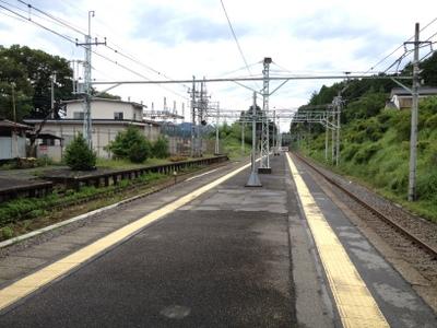 IMG_3176.jpg