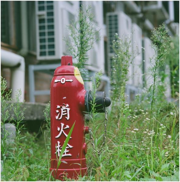 5-1-秋田2015-9-12-mamiya6-portra160-秋田駅前スナップ-9-g150-07470011_R