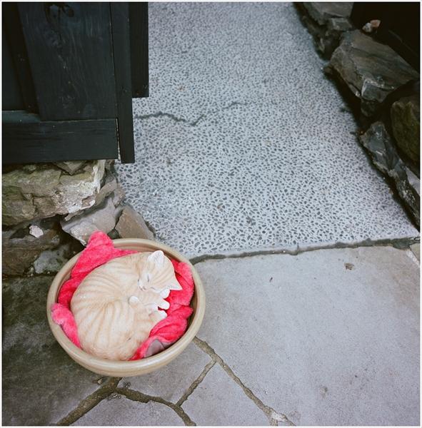 4-1-秋田2015-9-11-mamiya6-portra160-角館-10-g50-07500016_R