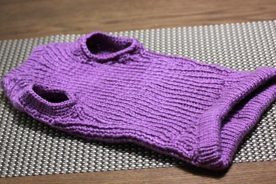 猫セーター1