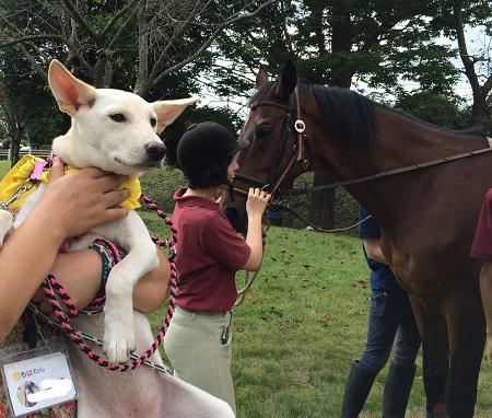 馬さんと撮影