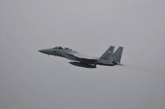 Hyakuri AB_F-15DJ_59