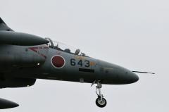 Hyakuri AB_T-4_46