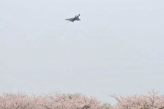 Hyakuri AB_F-4EJ_425