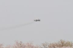Hyakuri AB_T-4_40