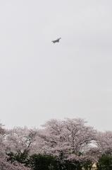 Hyakuri AB_F-4EJ_428
