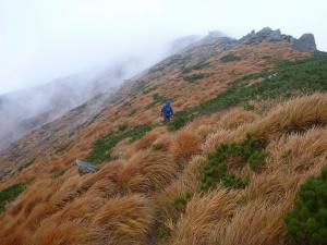 紅葉した山頂付近