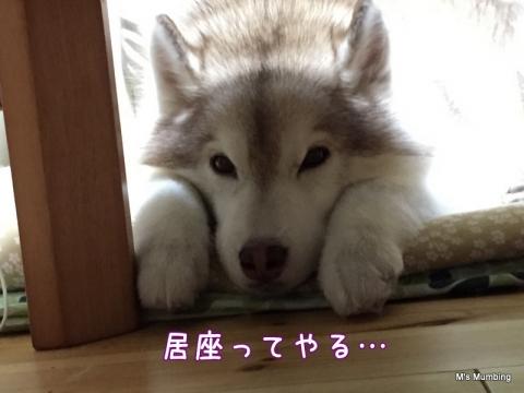 15_9_25_1