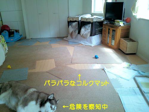 2014031401.jpg