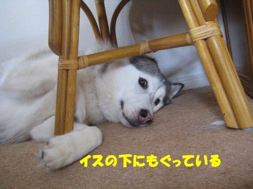 2014062701.jpg