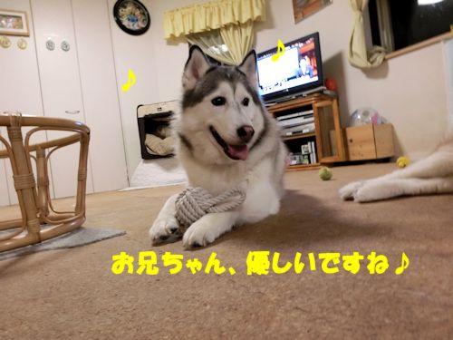 2014071509.jpg
