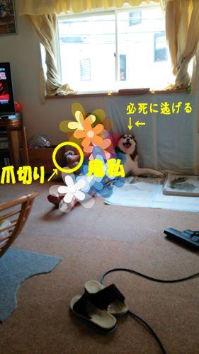 2014090701.jpg
