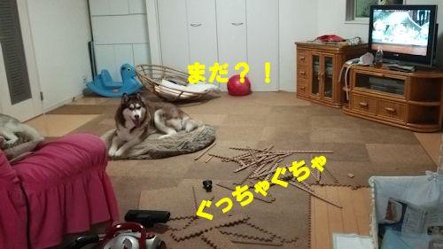 2014122701.jpg