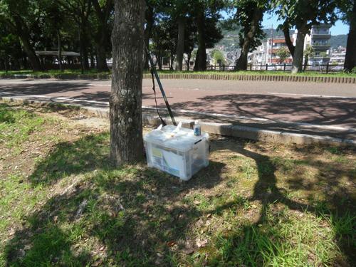 松山運動公園2