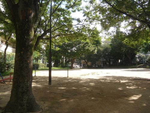 いつもの公園ね。