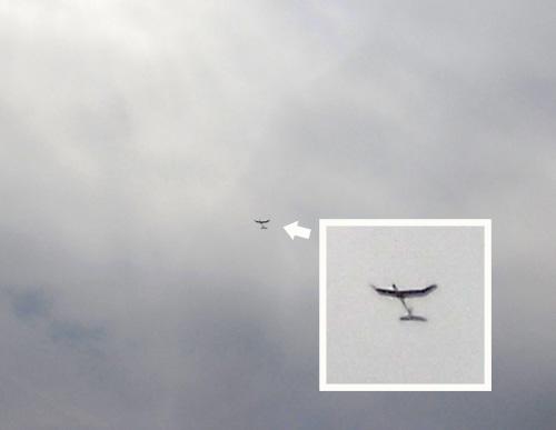 kh-/1605オバハン飛行中