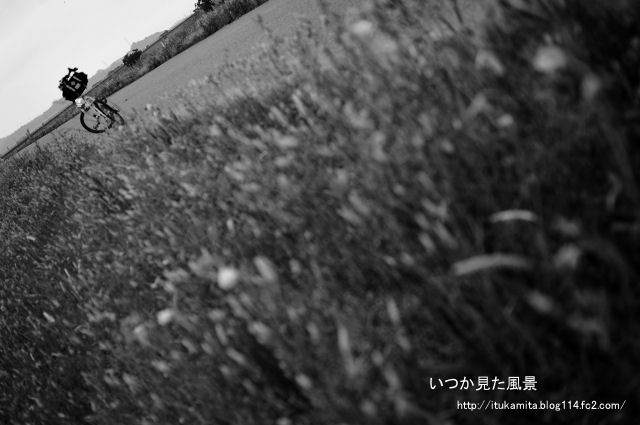 DS7_9504wi-s.jpg