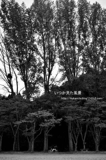 DS7_9517wi-s.jpg
