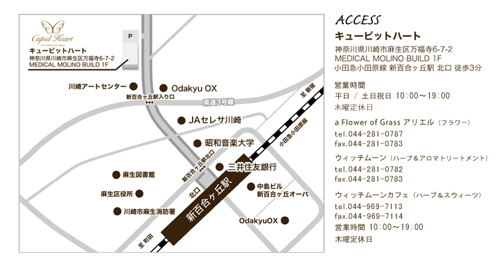access_2015092915553100c.jpg