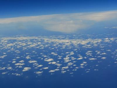 雲の上の羊