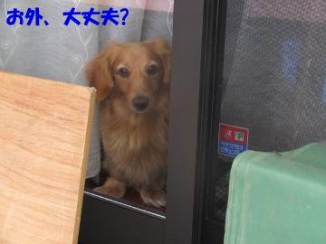 台風直撃14