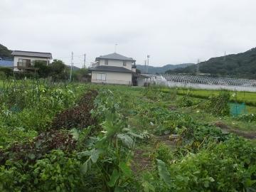 オフ会北九州