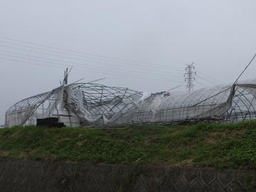 台風被害が6