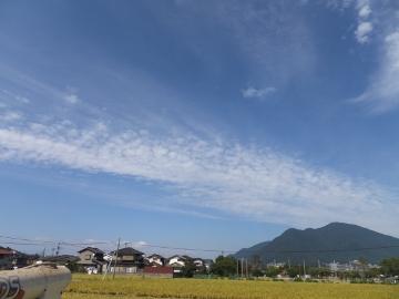 稲刈り揚田上9