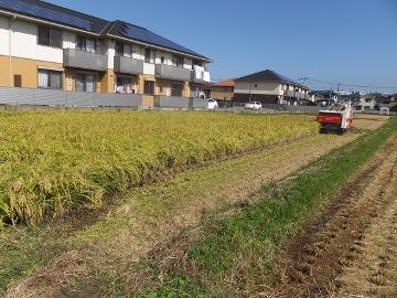 稲刈り終了27年