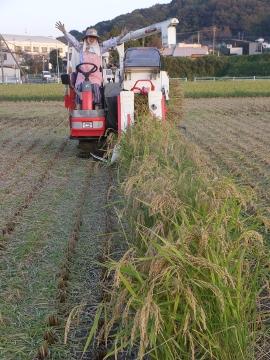 稲刈り終了27年6