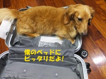 スーツケース好き♪2