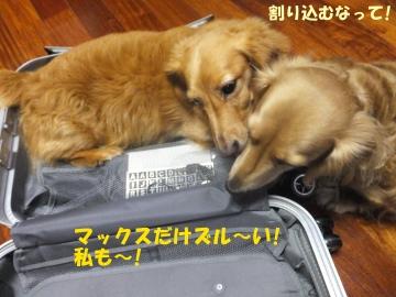 スーツケース好き♪3