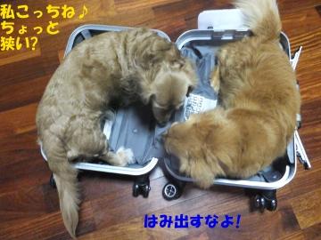 スーツケース好き♪4