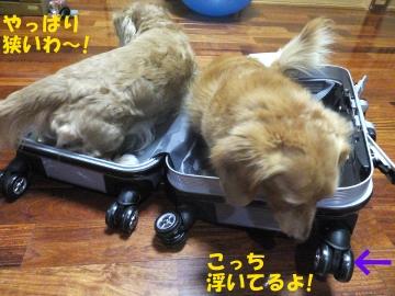 スーツケース好き♪5