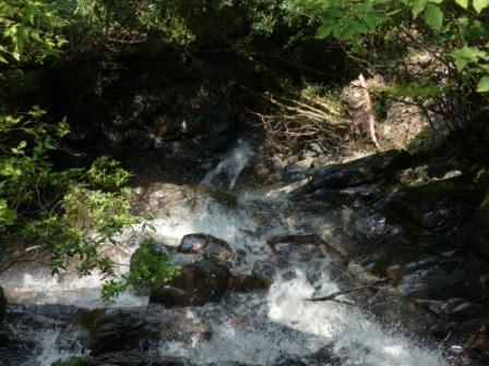 黒沢湿原 5