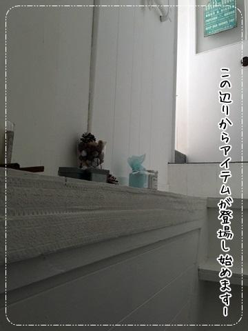 IMG_3754.jpg