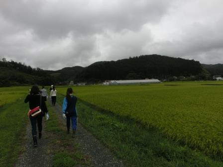 2015南三陸夏 25