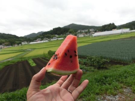 2015南三陸夏 27