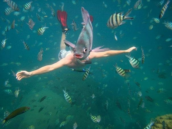hiltunganの海中