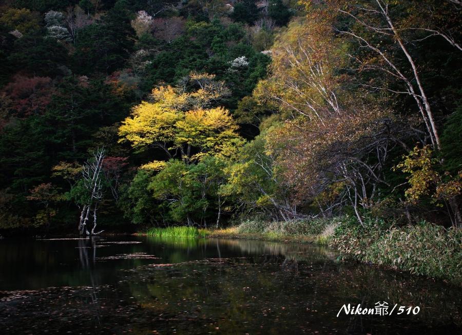 湯ノ湖の朝Ls