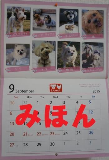 16カレンダー
