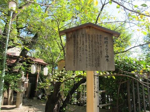 大阪天王寺 004