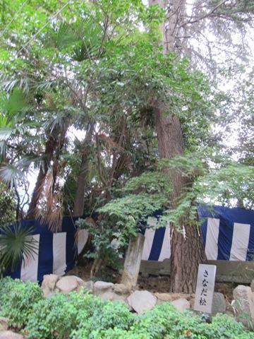 大阪天王寺 099