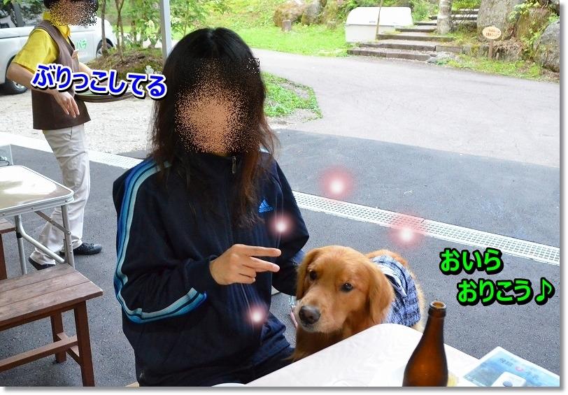 DSC_3005_201508271104186e6.jpg