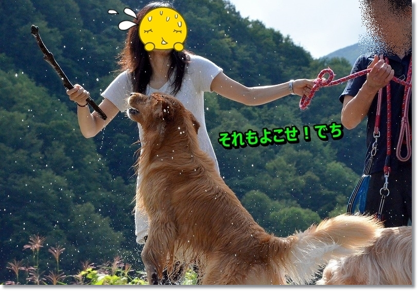 DSC_4079_20150913102226ca2.jpg