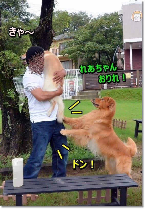 DSC_5144_201509051949457ba.jpg