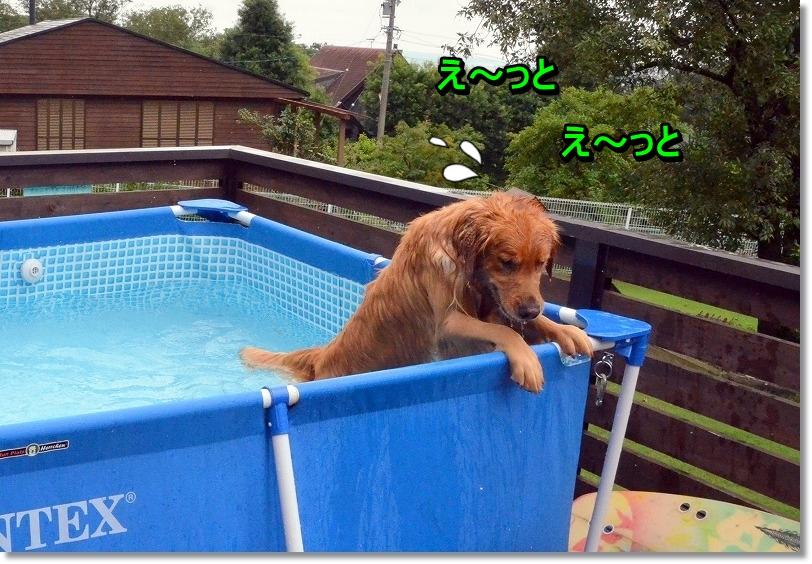 DSC_5203_20150907193707ae2.jpg
