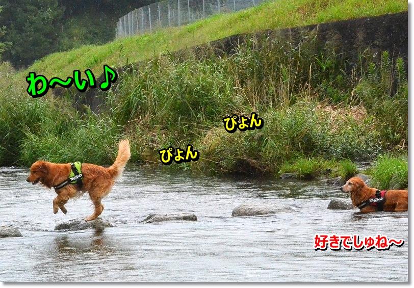 DSC_5430-1.jpg