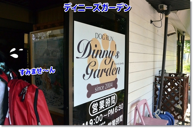 DSC_6067.jpg
